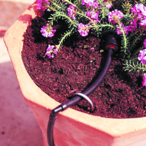 a drip irrigation system installed for flowers
